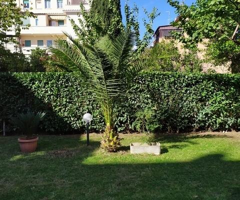 servizi di giardinaggio a roma